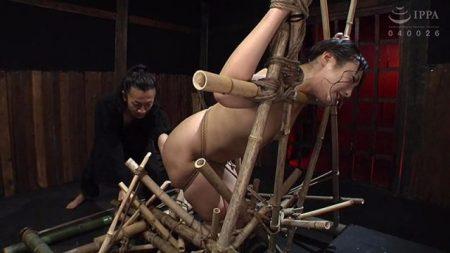 神納花 尻突き出しポーズで緊縛された美女がフィストでマンコを犯される 画像