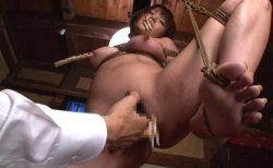 星美りか 資産家令嬢が借金の肩代わりに緊縛され性処理奴隷に堕ちる 画像