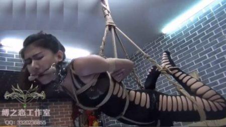 宙吊り拘束された美女がマンコをローター責めされて喘ぎまくるwww 画像
