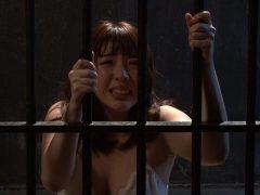 「緊縛飼育〜危険な毒花〜1」 かなで自由(12)